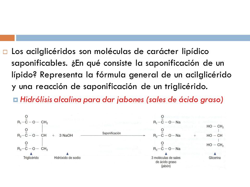Los acilglicéridos son moléculas de carácter lipídico saponificables. ¿En qué consiste la saponificación de un lípido? Representa la fórmula general d