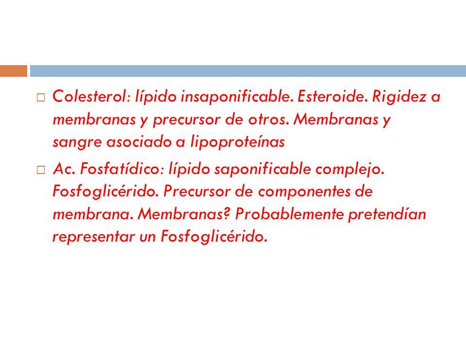 Colesterol: lípido insaponificable. Esteroide. Rigidez a membranas y precursor de otros. Membranas y sangre asociado a lipoproteínas Ac. Fosfatídico: