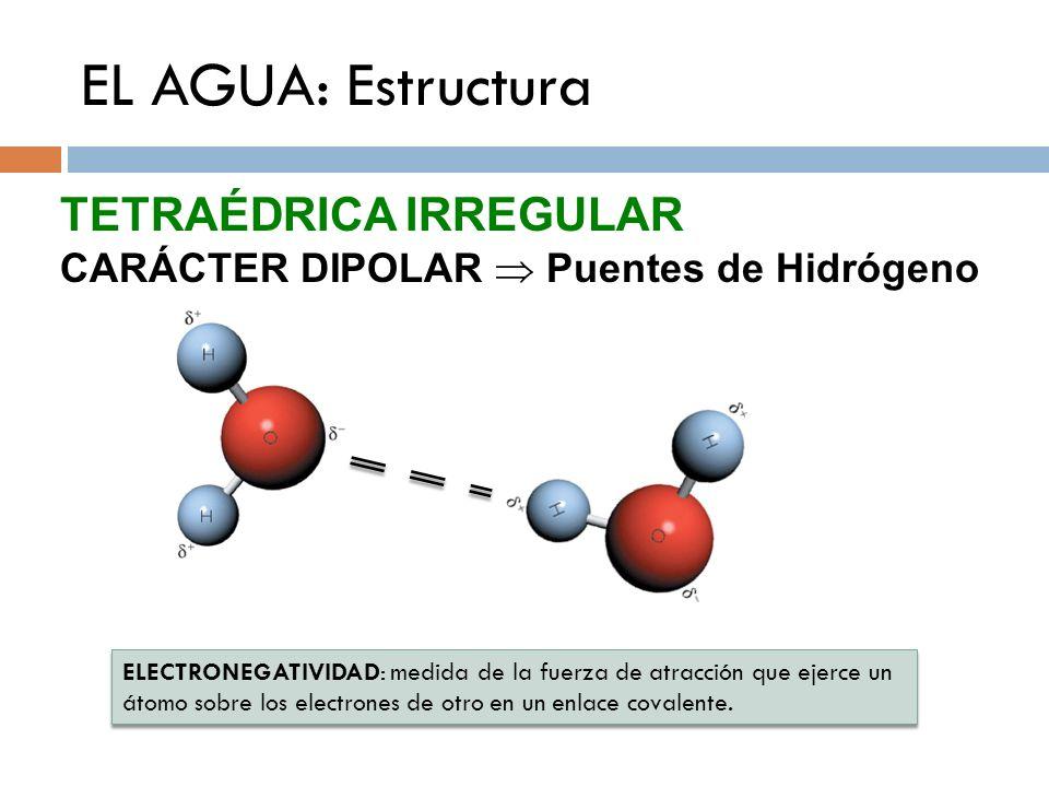 EL AGUA: Estructura ELECTRONEGATIVIDAD: medida de la fuerza de atracción que ejerce un átomo sobre los electrones de otro en un enlace covalente. ELEC