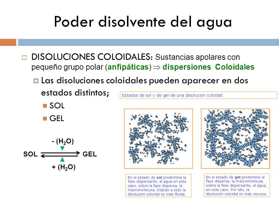 Poder disolvente del agua DISOLUCIONES COLOIDALES: Sustancias apolares con pequeño grupo polar (anfipáticas) dispersiones Coloidales Las disoluciones