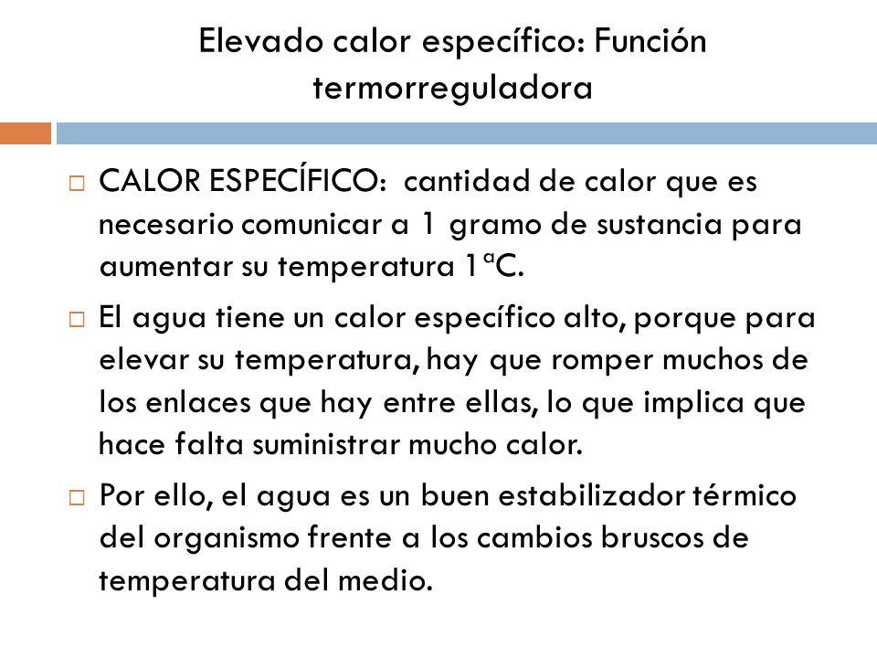 CALOR ESPECÍFICO: cantidad de calor que es necesario comunicar a 1 gramo de sustancia para aumentar su temperatura 1ªC. El agua tiene un calor específ