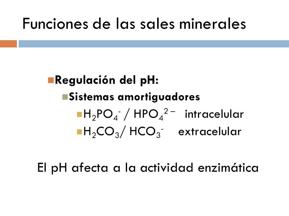 Funciones de las sales minerales Regulación del pH: Sistemas amortiguadores H 2 PO 4 - / HPO 4 2 – intracelular H 2 CO 3 / HCO 3 - extracelular El pH