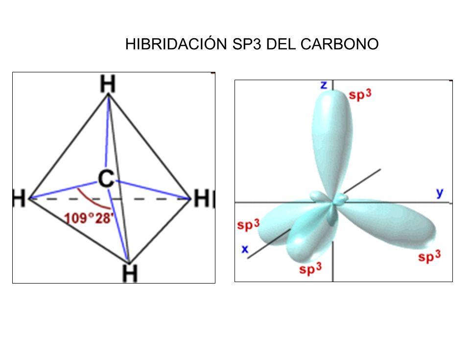 Hibridación Sp3 Del Carbono