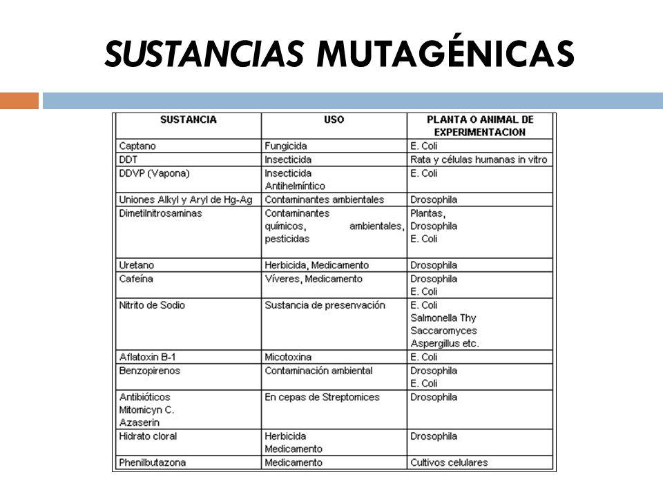 SUSTANCIAS MUTAGÉNICAS