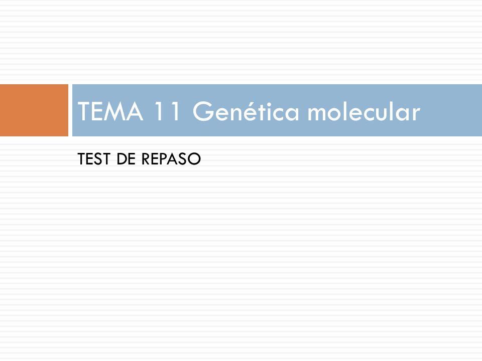 TEST DE REPASO TEMA 11 Genética molecular