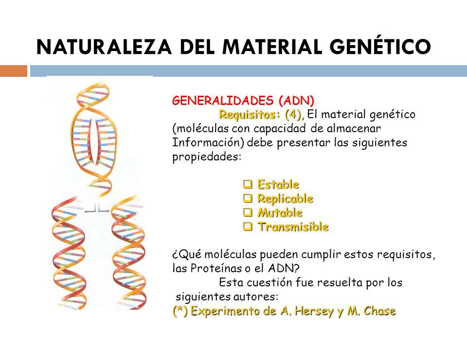 NATURALEZA DEL MATERIAL GENÉTICO GENERALIDADES (ADN) Requisitos: (4), Requisitos: (4), El material genético (moléculas con capacidad de almacenar Info