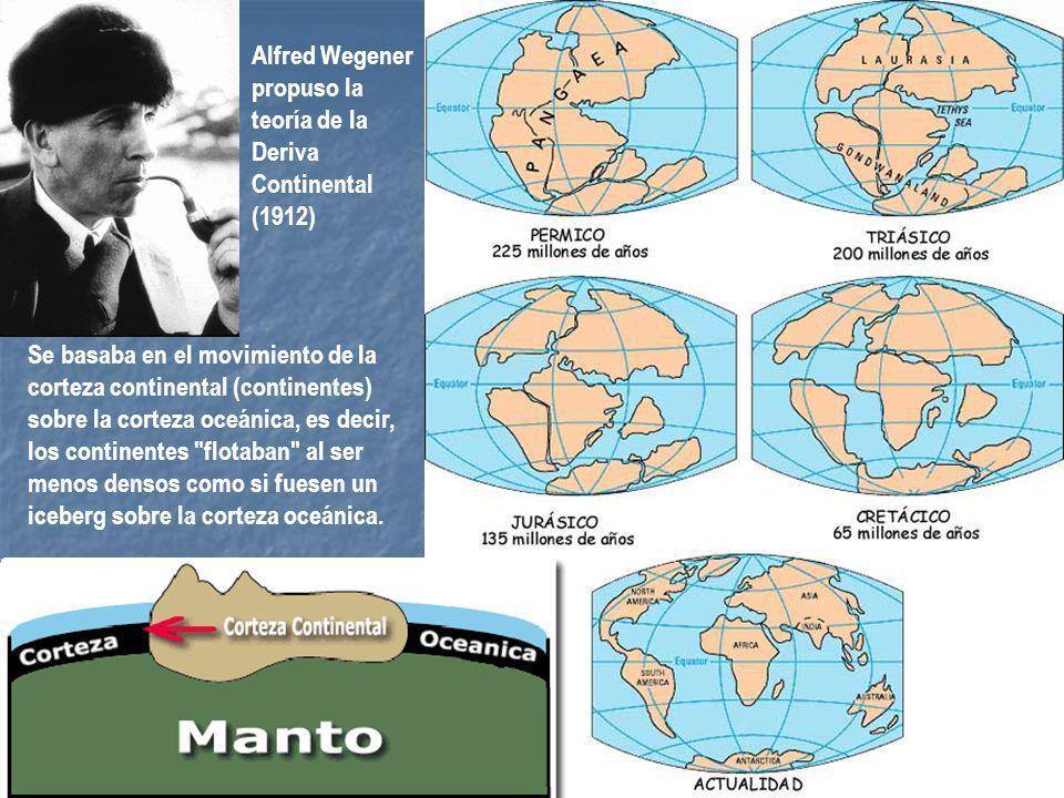 Alfred Wegener propuso la teoría de la Deriva Continental (1912) Se basaba en el movimiento de la corteza continental (continentes) sobre la corteza o