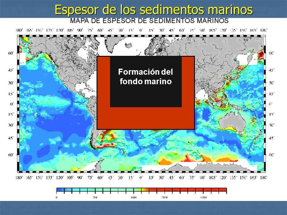 Formación del fondo marino Espesor de los sedimentos marinos