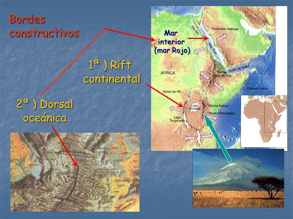 Bordesconstructivos 1ª ) Rift continental 2ª ) Dorsal oceánica Marinterior (mar Rojo)