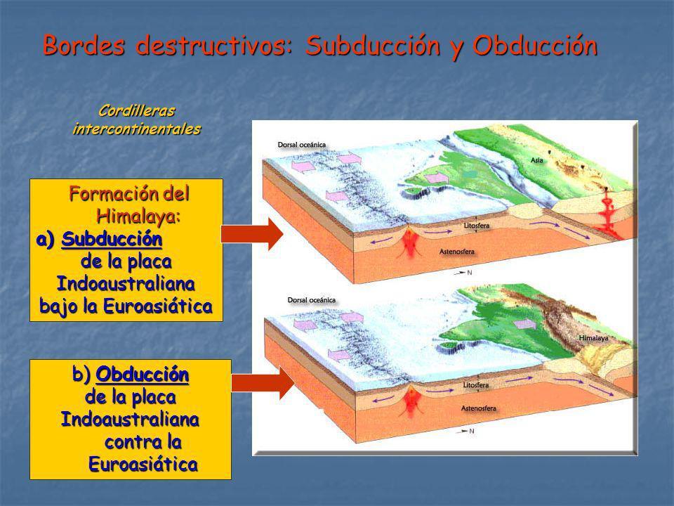 Bordes destructivos: Subducción y Obducción Cordillerasintercontinentales Formación del Himalaya: Formación del Himalaya: a)Subducción de la placa Ind