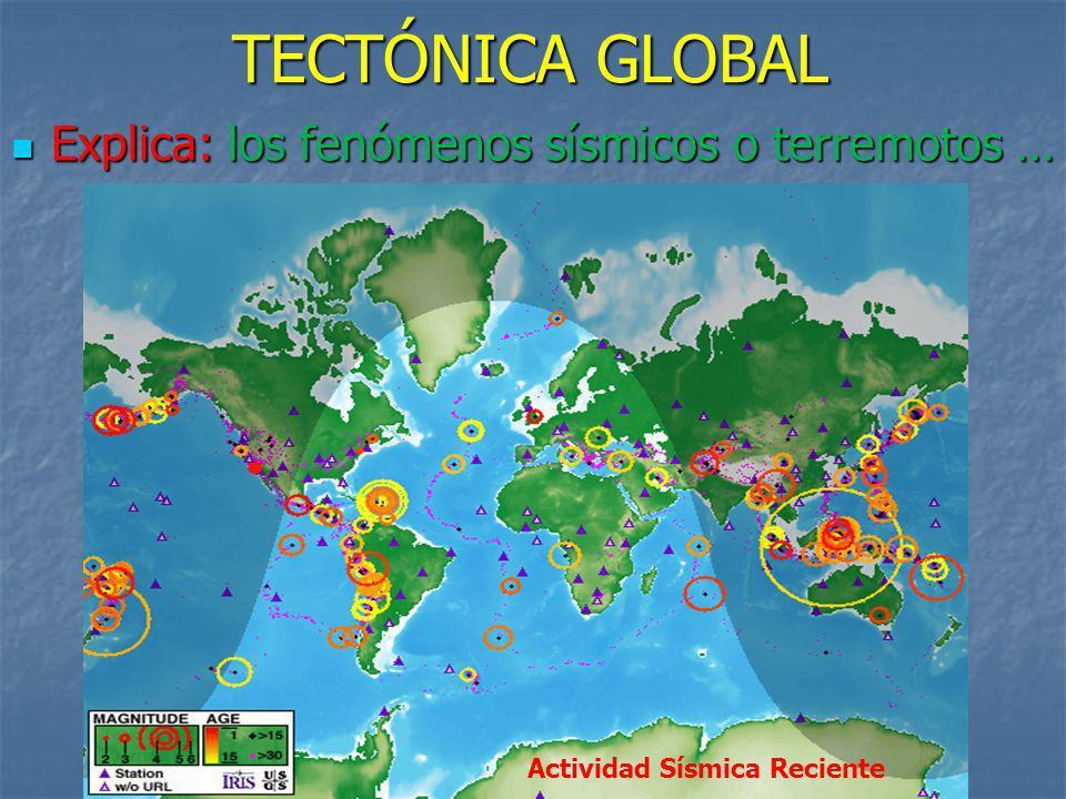 Explica: los fenómenos sísmicos o terremotos … Actividad Sísmica Reciente