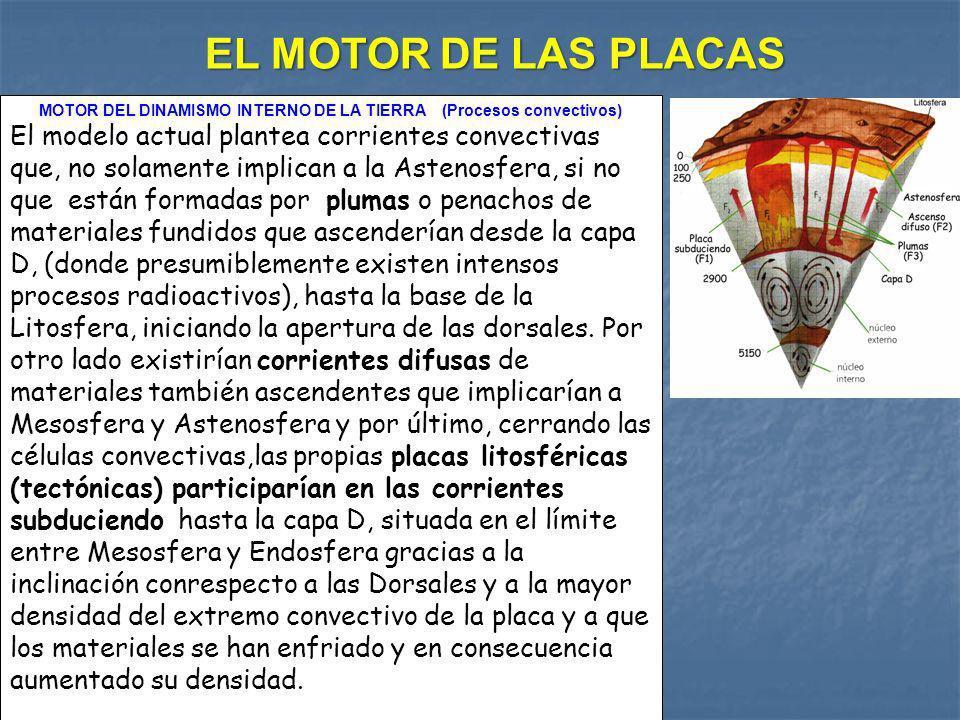 MOTOR DEL DINAMISMO INTERNO DE LA TIERRA (Procesos convectivos) El modelo actual plantea corrientes convectivas que, no solamente implican a la Asteno