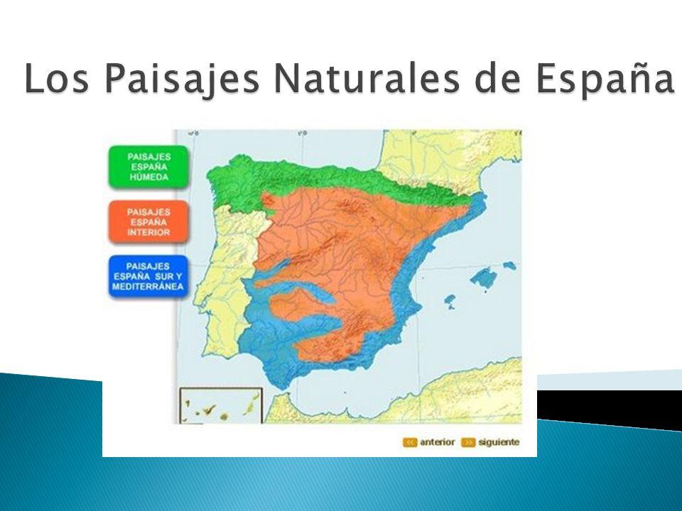 localización Paisaje Oceánico relieve Mediterráneo de costa ríos Mediterráneo de interior clima Paisaje subtropical vegetación Paisaje de alta montaña fauna