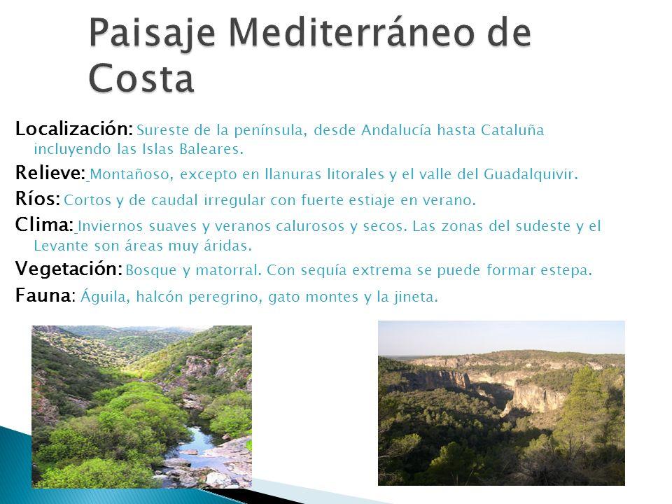 Paisaje Mediterráneo de Costa Localización: Sureste de la península, desde Andalucía hasta Cataluña incluyendo las Islas Baleares. Relieve: Montañoso,