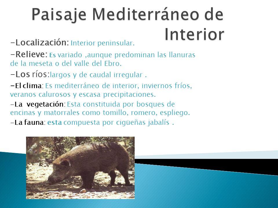 -Localización: Interior peninsular. -Relieve: Es variado,aunque predominan las llanuras de la meseta o del valle del Ebro. -Los ríos: largos y de caud