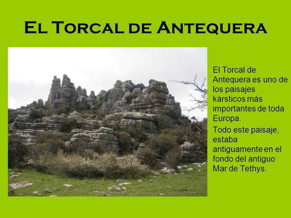 El Torcal de Antequera El Torcal de Antequera es uno de los paisajes kársticos más importantes de toda Europa. Todo este paisaje, estaba antiguamente