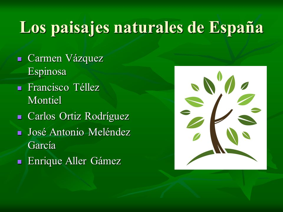Los paisajes naturales de España Carmen Vázquez Espinosa Carmen Vázquez Espinosa Francisco Téllez Montiel Francisco Téllez Montiel Carlos Ortiz Rodríg