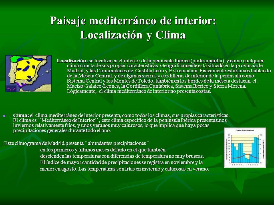 Paisaje mediterráneo de interior: Localización y Clima Localización: se localiza en el interior de la península Ibérica (parte amarilla) y como cualqu