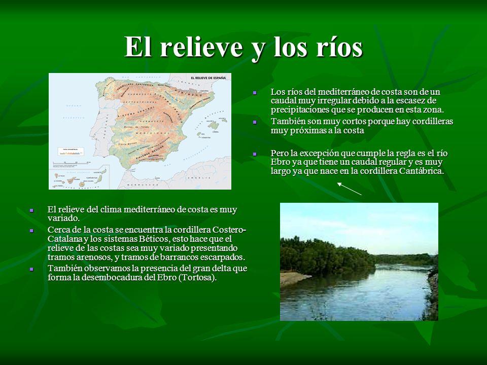 El relieve y los ríos El relieve del clima mediterráneo de costa es muy variado. El relieve del clima mediterráneo de costa es muy variado. Cerca de l