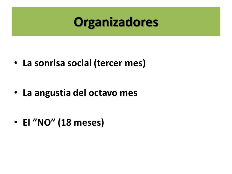 Organizadores La sonrisa social (tercer mes) La angustia del octavo mes El NO (18 meses)