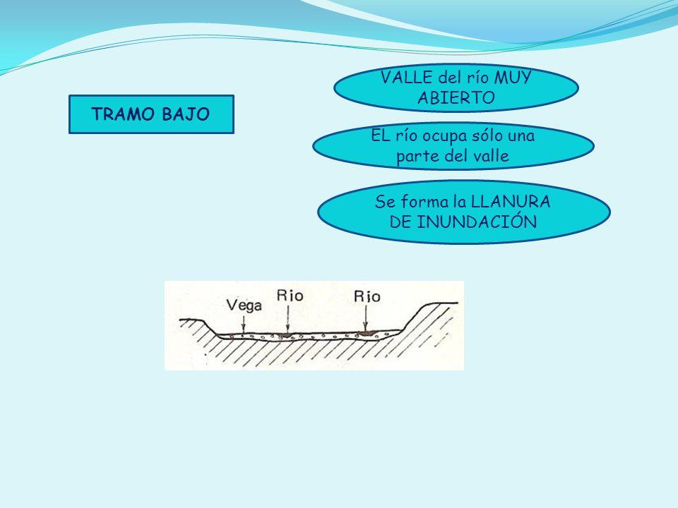 TRAMO BAJO VALLE del río MUY ABIERTO EL río ocupa sólo una parte del valle Se forma la LLANURA DE INUNDACIÓN