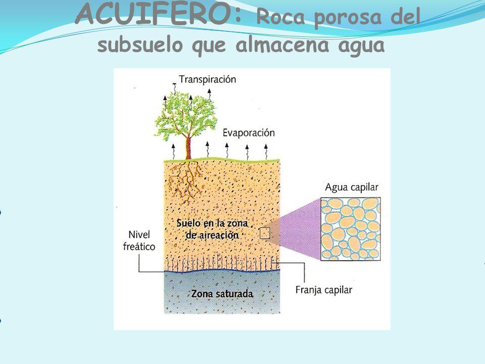 ACUÍFERO: Roca porosa del subsuelo que almacena agua Nivel superior del agua en la zona saturada El agua infiltrada va circulando por los poros y grie