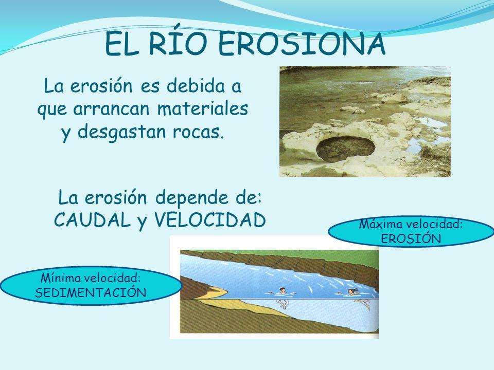 La erosión es debida a que arrancan materiales y desgastan rocas. EL RÍO EROSIONA La erosión depende de: CAUDAL y VELOCIDAD Máxima velocidad: EROSIÓN