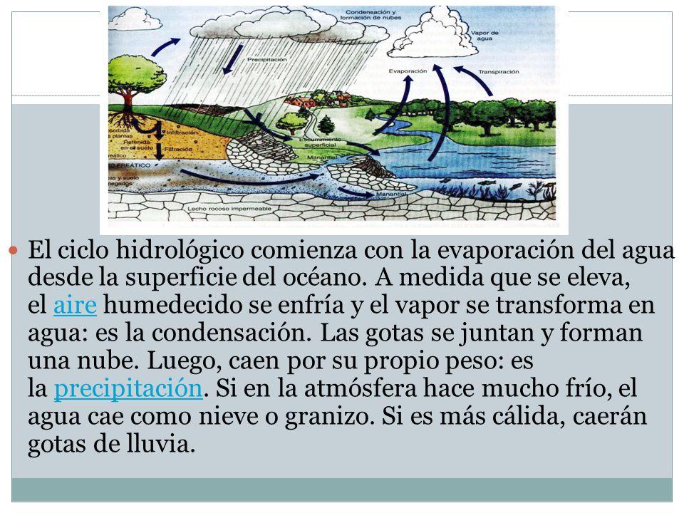 El ciclo hidrológico comienza con la evaporación del agua desde la superficie del océano. A medida que se eleva, el aire humedecido se enfría y el vap