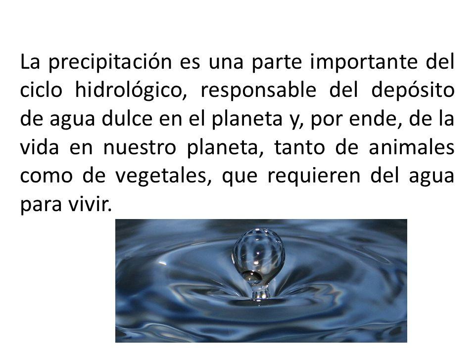 La precipitación es una parte importante del ciclo hidrológico, responsable del depósito de agua dulce en el planeta y, por ende, de la vida en nuestr