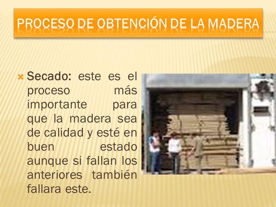 Secado: este es el proceso más importante para que la madera sea de calidad y esté en buen estado aunque si fallan los anteriores también fallara este