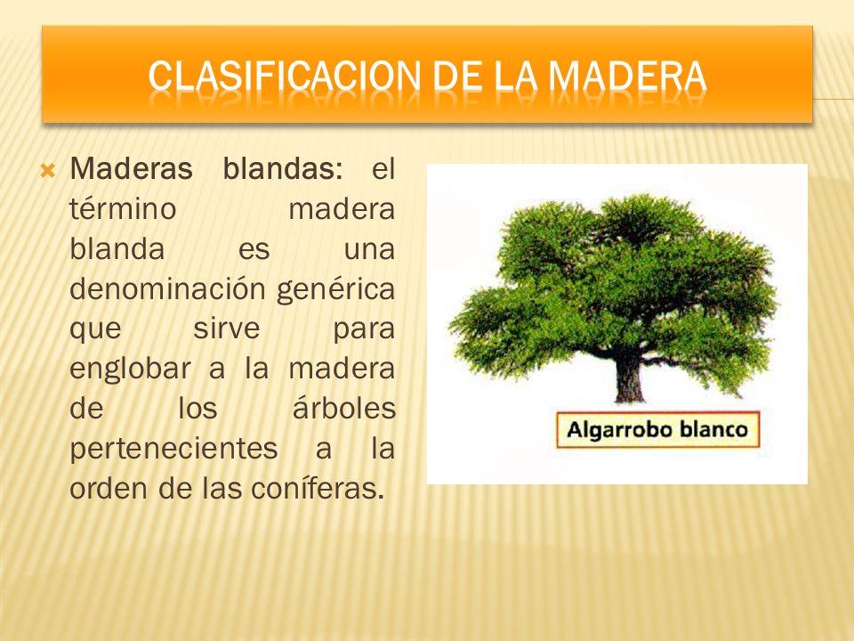 Maderas blandas: el término madera blanda es una denominación genérica que sirve para englobar a la madera de los árboles pertenecientes a la orden de