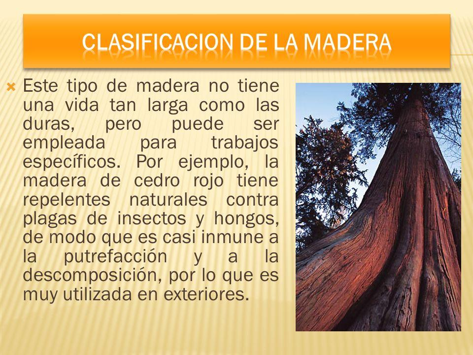 Este tipo de madera no tiene una vida tan larga como las duras, pero puede ser empleada para trabajos específicos. Por ejemplo, la madera de cedro roj