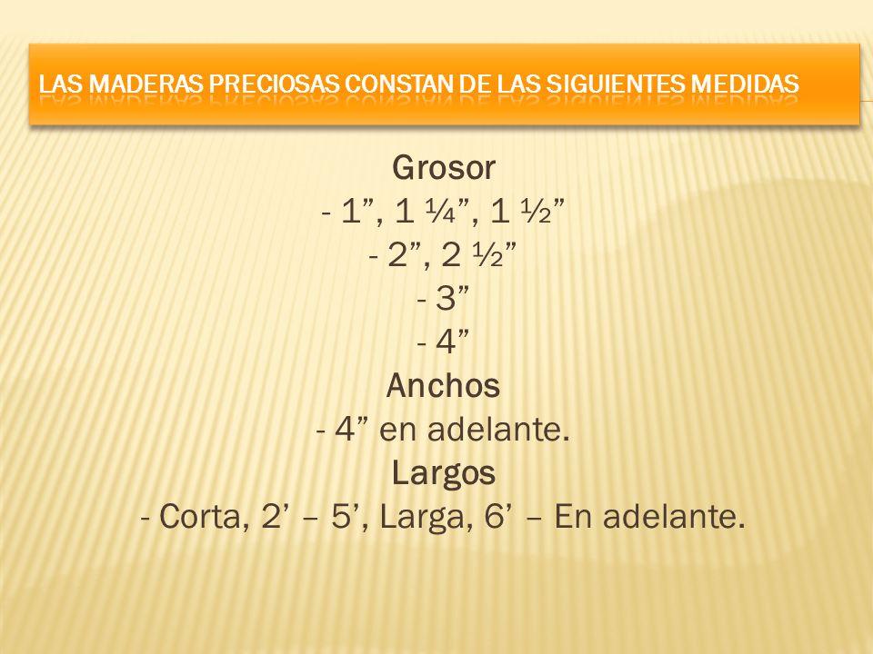 Grosor - 1, 1 ¼, 1 ½ - 2, 2 ½ - 3 - 4 Anchos - 4 en adelante. Largos - Corta, 2 – 5, Larga, 6 – En adelante.