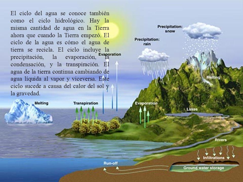 El ciclo del agua se conoce también como el ciclo hidrológico. Hay la misma cantidad de agua en la Tierra ahora que cuando la Tierra empezó. El ciclo
