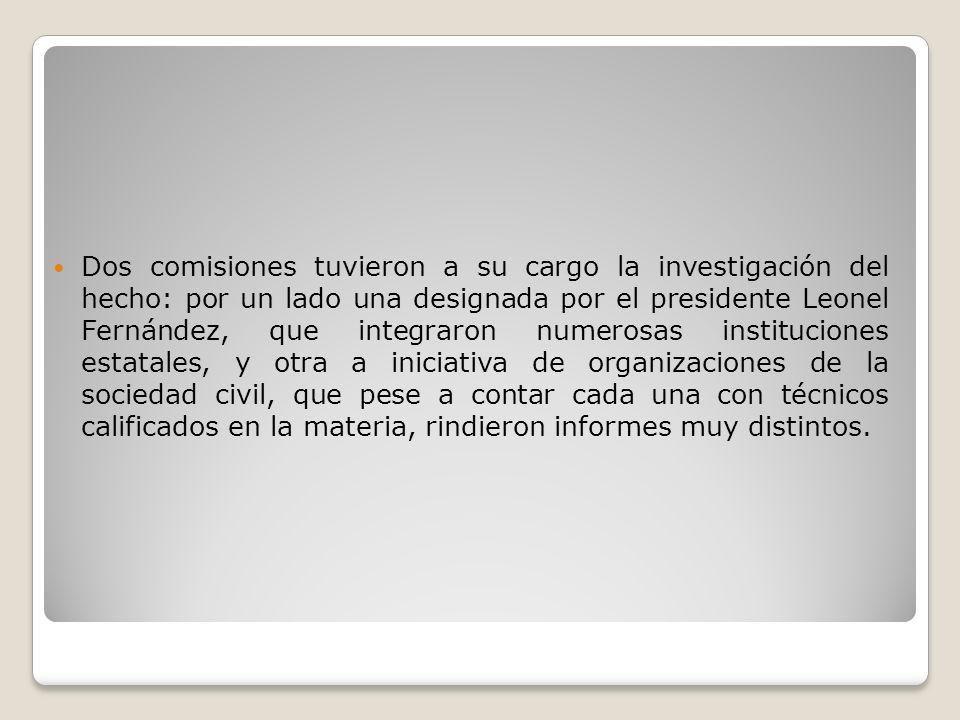 Dos comisiones tuvieron a su cargo la investigación del hecho: por un lado una designada por el presidente Leonel Fernández, que integraron numerosas