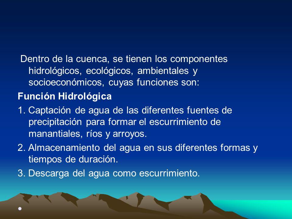 Dentro de la cuenca, se tienen los componentes hidrológicos, ecológicos, ambientales y socioeconómicos, cuyas funciones son: Función Hidrológica 1. Ca