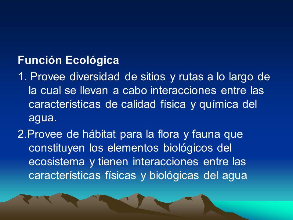 Función Ecológica 1. Provee diversidad de sitios y rutas a lo largo de la cual se llevan a cabo interacciones entre las características de calidad fís