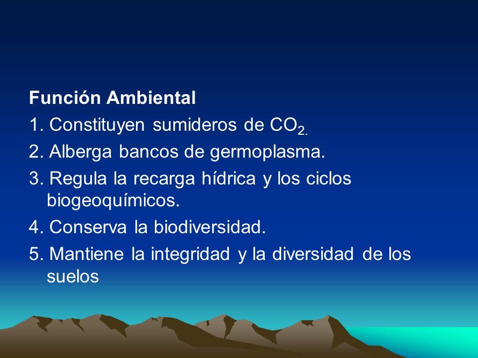 Función Ambiental 1. Constituyen sumideros de CO 2. 2. Alberga bancos de germoplasma. 3. Regula la recarga hídrica y los ciclos biogeoquímicos. 4. Con