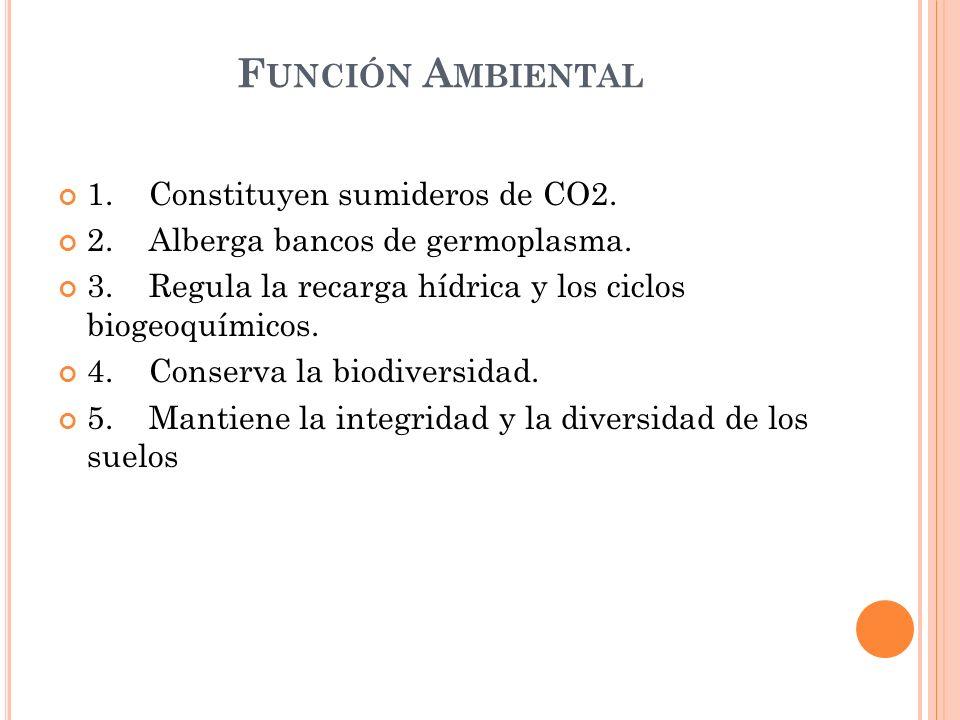 F UNCIÓN A MBIENTAL 1. Constituyen sumideros de CO2. 2. Alberga bancos de germoplasma. 3. Regula la recarga hídrica y los ciclos biogeoquímicos. 4. Co