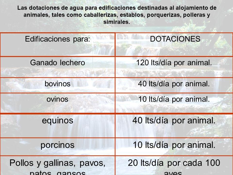 Las dotaciones de agua para edificaciones destinadas al alojamiento de animales, tales como caballerizas, establos, porquerizas, polleras y simirales.