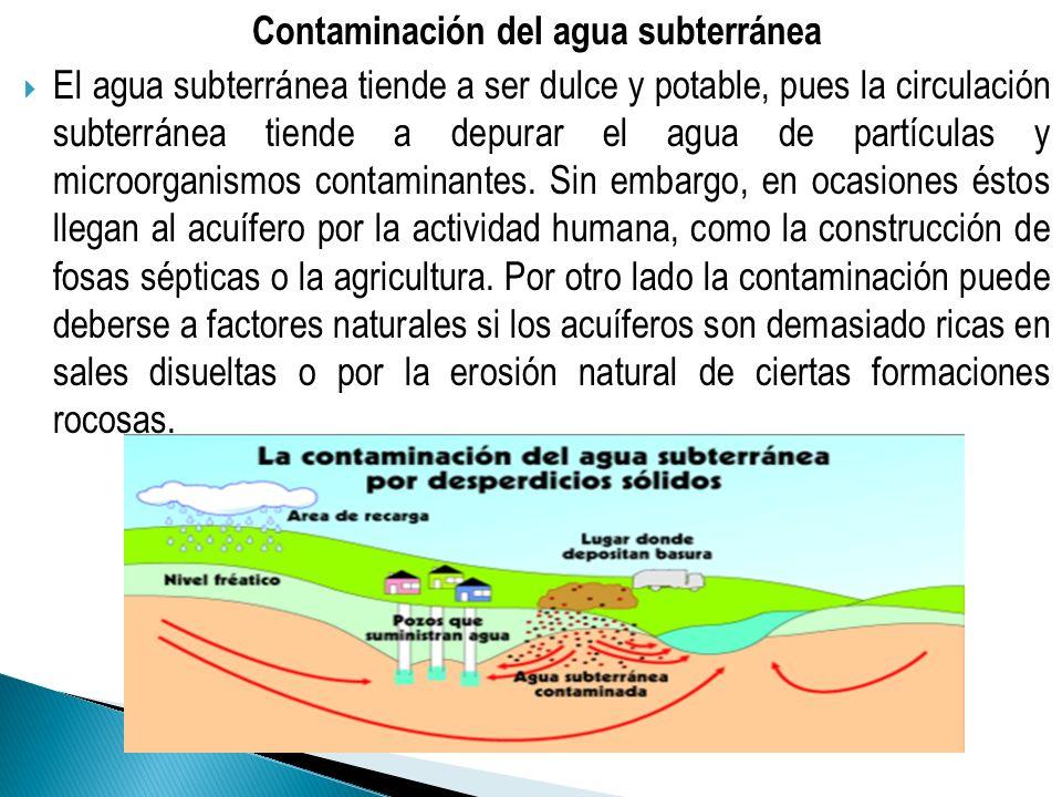 Contaminación del agua subterránea El agua subterránea tiende a ser dulce y potable, pues la circulación subterránea tiende a depurar el agua de partí