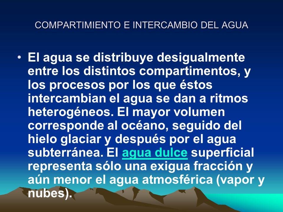 COMPARTIMIENTO E INTERCAMBIO DEL AGUA El agua se distribuye desigualmente entre los distintos compartimentos, y los procesos por los que éstos interca