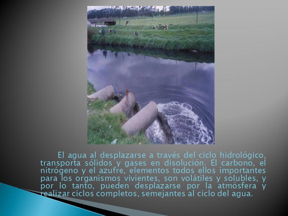 El agua al desplazarse a través del ciclo hidrológico, transporta sólidos y gases en disolución. El carbono, el nitrógeno y el azufre, elementos todos