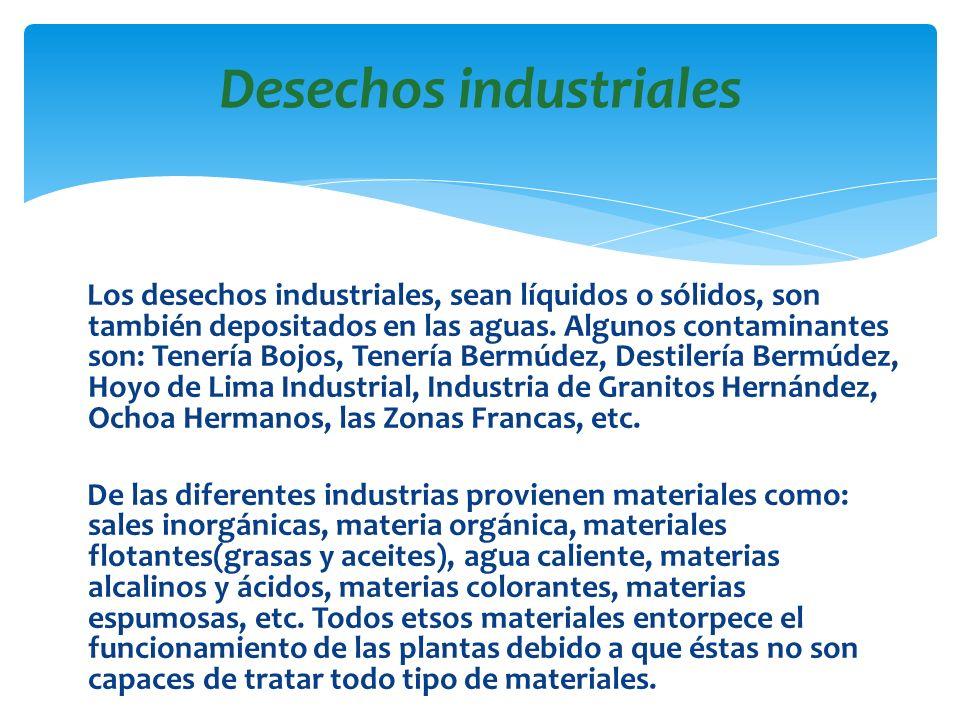 Los desechos industriales, sean líquidos o sólidos, son también depositados en las aguas. Algunos contaminantes son: Tenería Bojos, Tenería Bermúdez,
