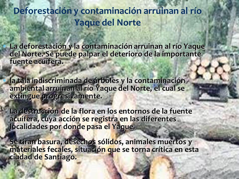 Deforestación y contaminación arruinan al río Yaque del Norte La deforestación y la contaminación arruinan al río Yaque del Norte. Se puede palpar el