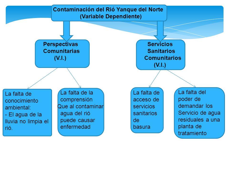 Contaminación del Rió Yanque del Norte (Variable Dependiente) Perspectivas Comunitarias (V.I.) Servicios Sanitarios Comunitarios (V.I.) La falta de co