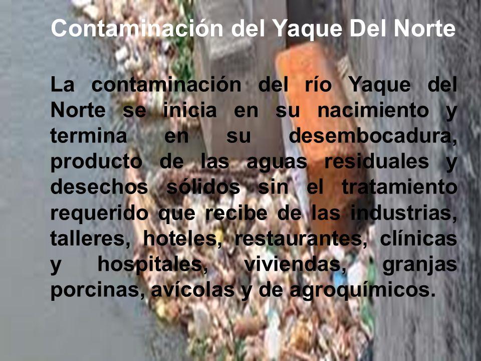Contaminación del Yaque Del Norte La contaminación del río Yaque del Norte se inicia en su nacimiento y termina en su desembocadura, producto de las a