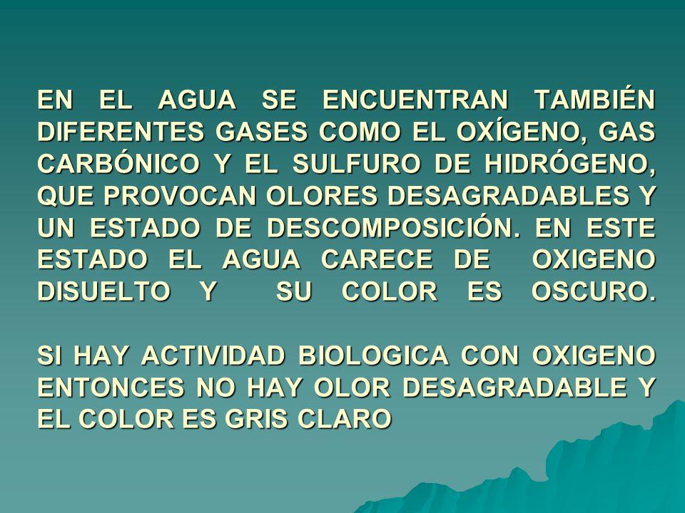 EN EL AGUA SE ENCUENTRAN TAMBIÉN DIFERENTES GASES COMO EL OXÍGENO, GAS CARBÓNICO Y EL SULFURO DE HIDRÓGENO, QUE PROVOCAN OLORES DESAGRADABLES Y UN EST