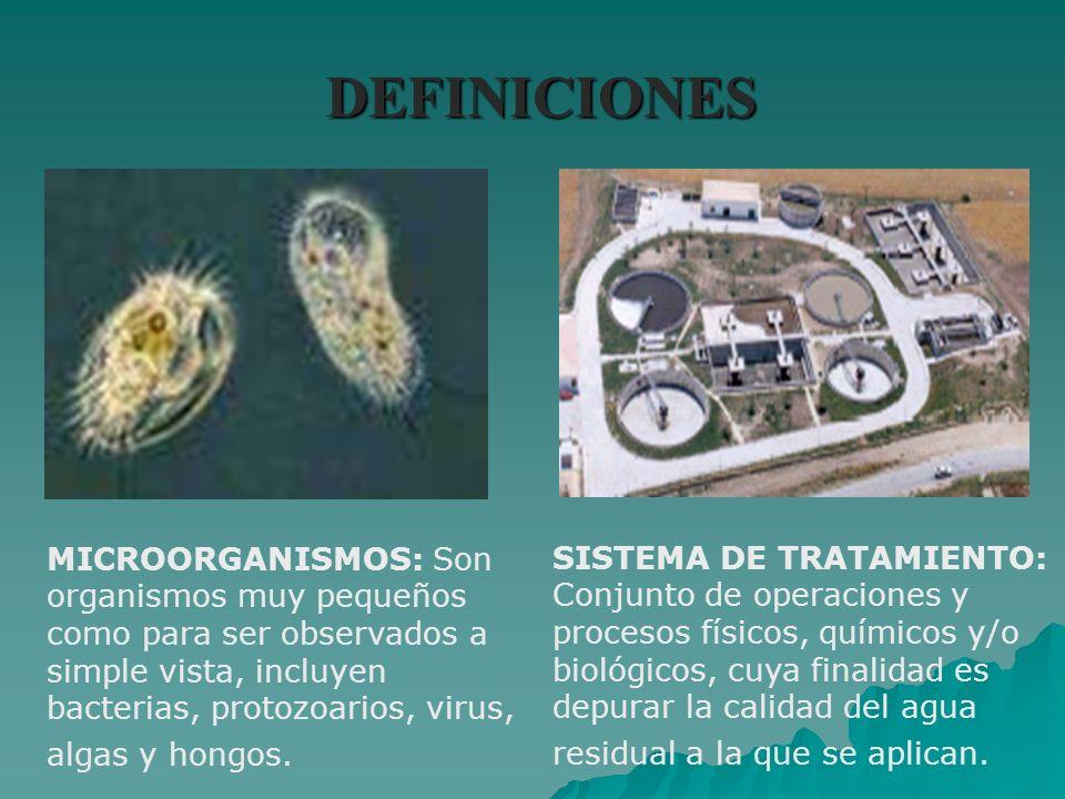 DEFINICIONES MICROORGANISMOS: Son organismos muy pequeños como para ser observados a simple vista, incluyen bacterias, protozoarios, virus, algas y ho