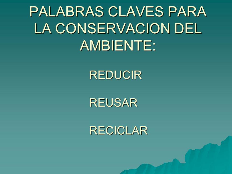 PALABRAS CLAVES PARA LA CONSERVACION DEL AMBIENTE: REDUCIR REUSAR RECICLAR